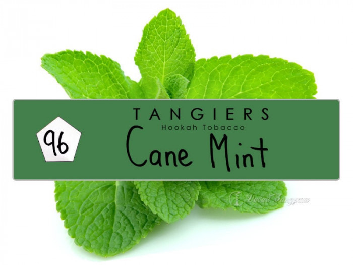 Tangiers Cane Mint